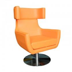 Class Lounge Chair
